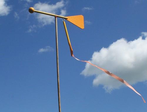 Wendehals- die Windfahne