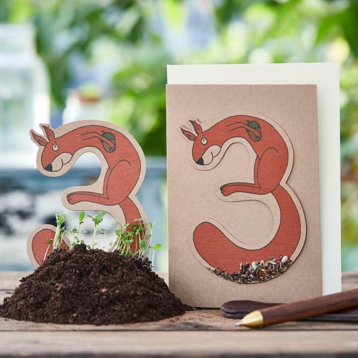 """3. Geburtstag """"Eichhörnchen"""""""